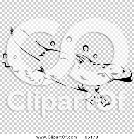 Transparent clip art background preview #COLLC65178