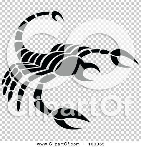 Transparent clip art background preview #COLLC100855