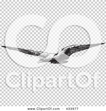 Transparent clip art background preview #COLLC433977