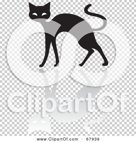 Transparent clip art background preview #COLLC67939