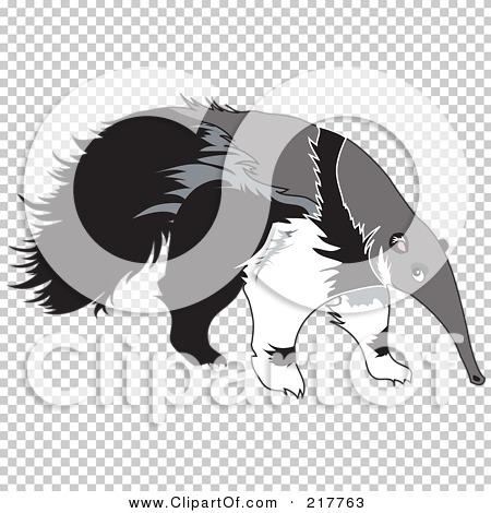 Transparent clip art background preview #COLLC217763