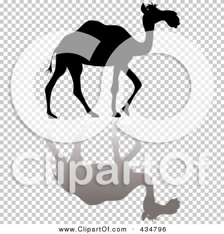 Transparent clip art background preview #COLLC434796