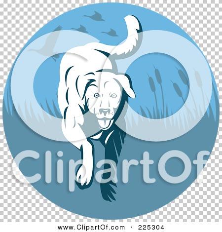 Transparent clip art background preview #COLLC225304
