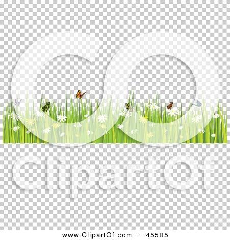 Transparent clip art background preview #COLLC45585