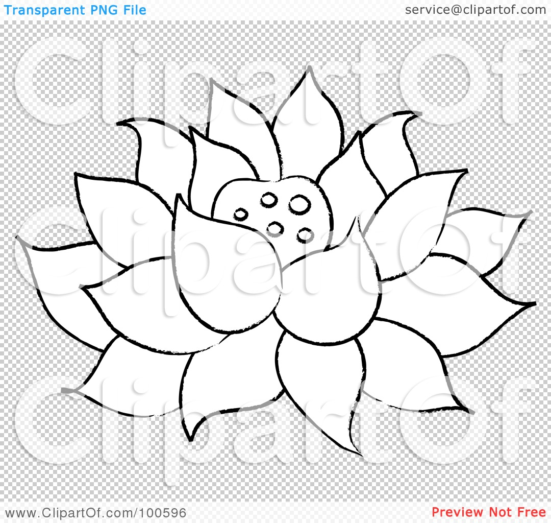 Free Pond Cattails Coloring Pages
