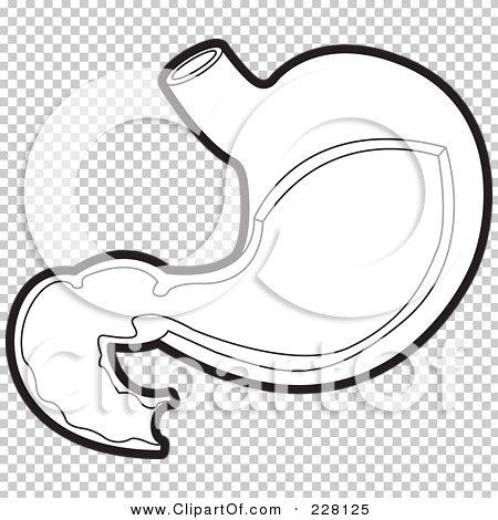 HealthTopicDetailsKids furthermore Search also Stomach And Intestines Coloring Page Sketch Templates furthermore Anatomy Stomach And Intestines Diagram furthermore Small intestine clipart. on large intestines digestive system diagram