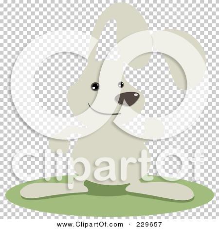 Transparent clip art background preview #COLLC229657