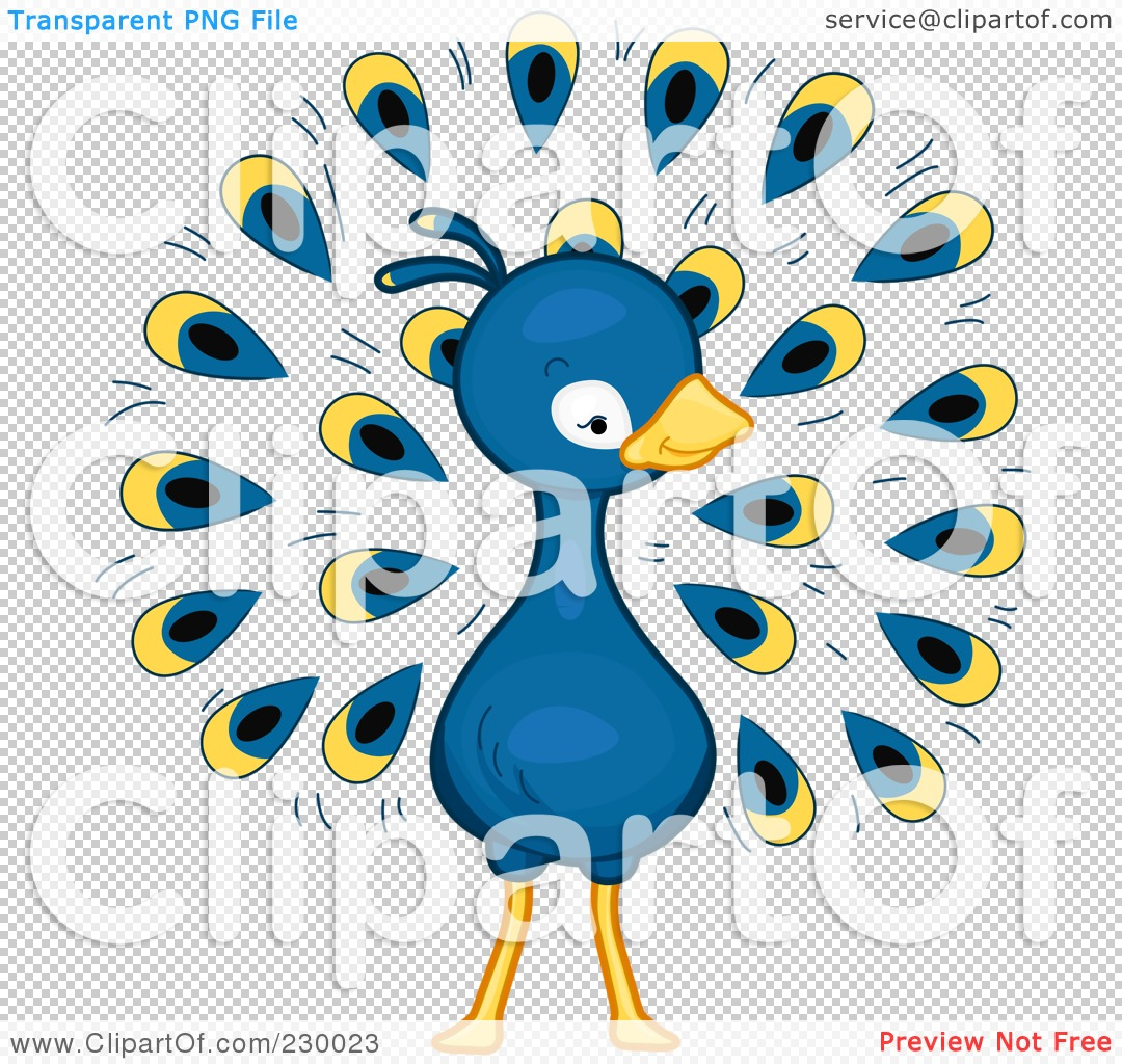 Cute Peacock Drawings Png File Has a