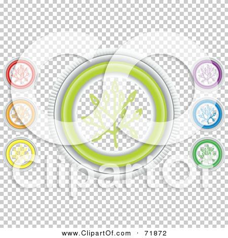 Transparent clip art background preview #COLLC71872