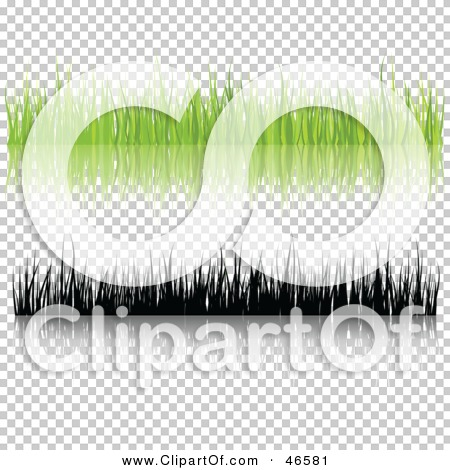 Transparent clip art background preview #COLLC46581