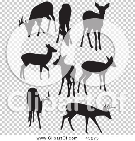 Transparent clip art background preview #COLLC45275