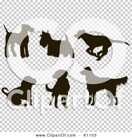 Transparent clip art background preview #COLLC61103