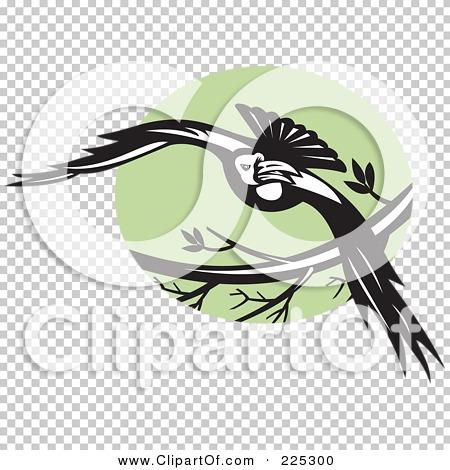 Transparent clip art background preview #COLLC225300