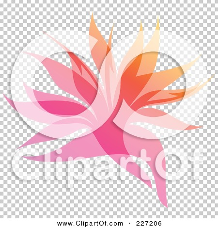Transparent clip art background preview #COLLC227206