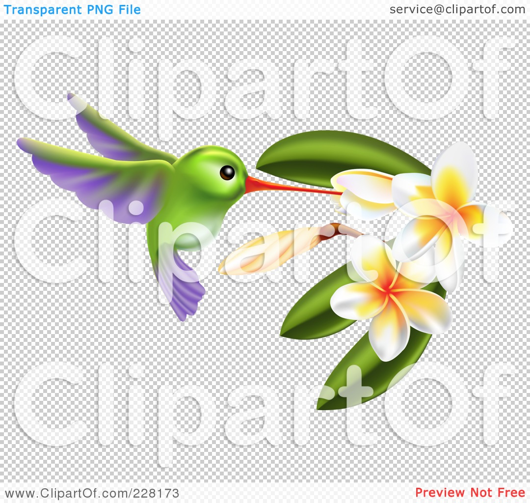 Royalty Free (RF) Clipart Illustration Of A Green And Purple ...