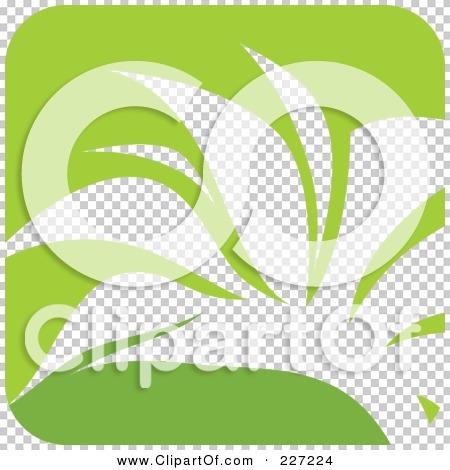 Transparent clip art background preview #COLLC227224