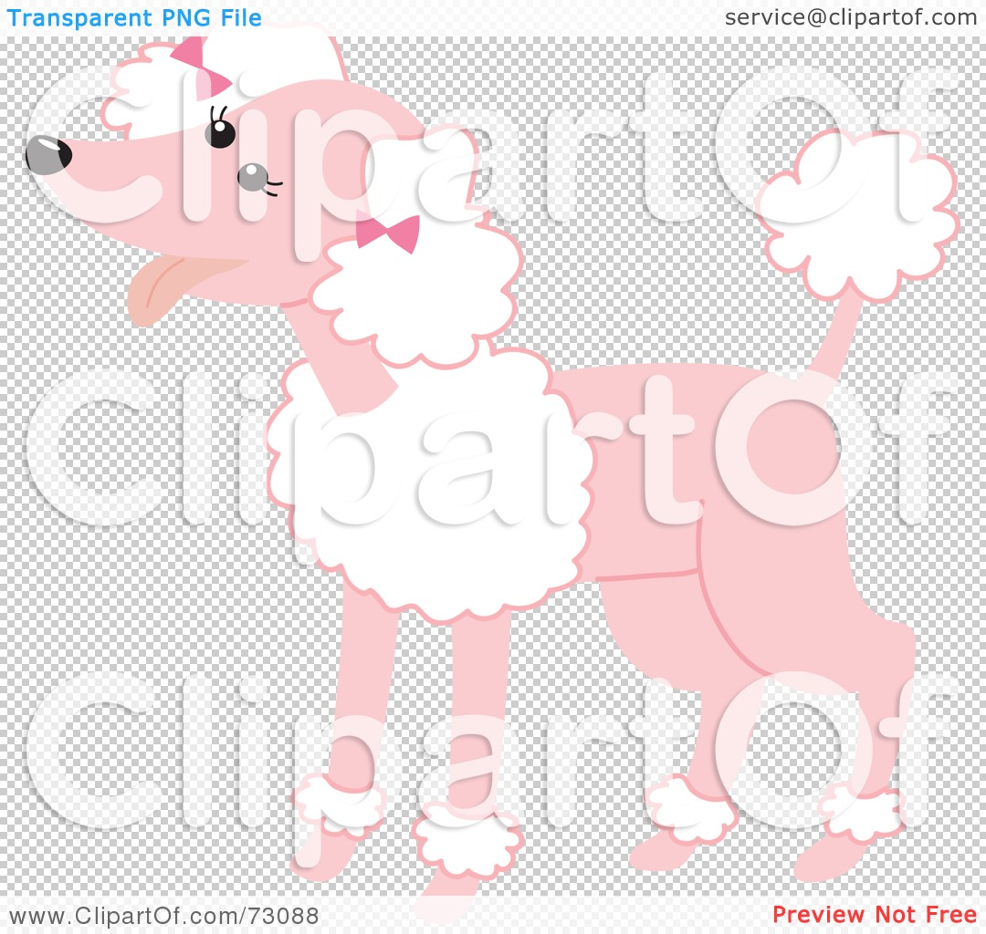 Free rf poodle clipart illustration 215241 by bnp design studio - Png File Has A
