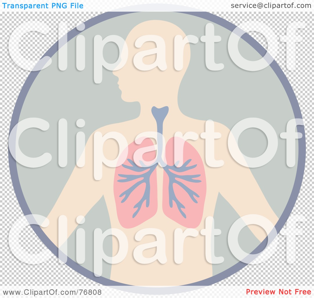 Royalty-Free (RF) Clipart Illustration of a Human Body With The ...