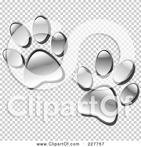 Transparent clip art background preview #COLLC227757