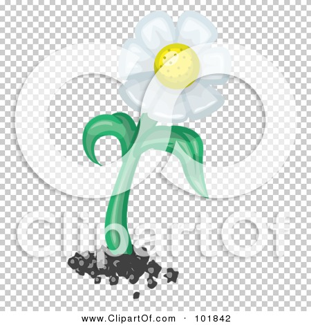 Transparent clip art background preview #COLLC101842