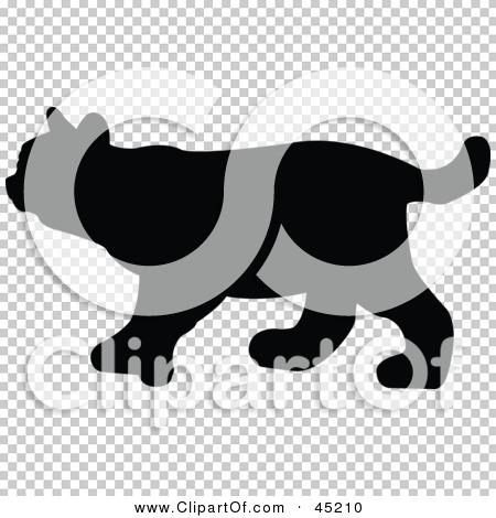 Transparent clip art background preview #COLLC45210
