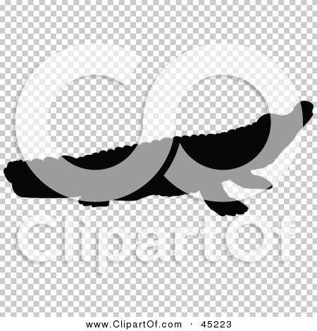 Transparent clip art background preview #COLLC45223