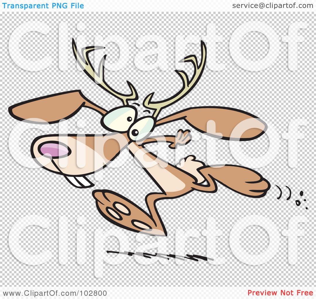 Jackalope Illustration Stock Description