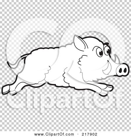 Transparent clip art background preview #COLLC217902