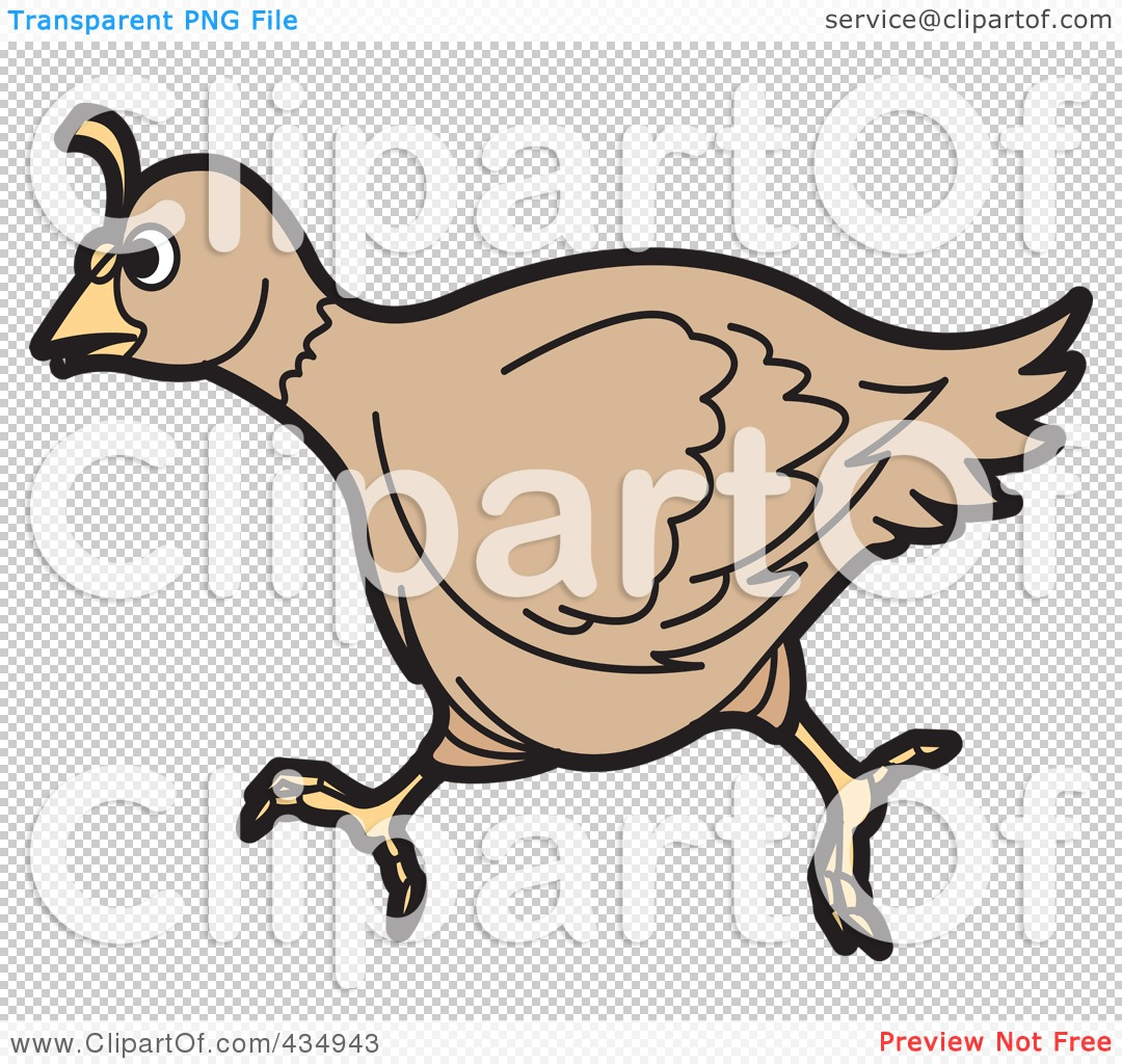 The PNG file has a  Quail Png