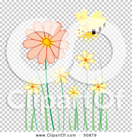 Transparent clip art background preview #COLLC50879