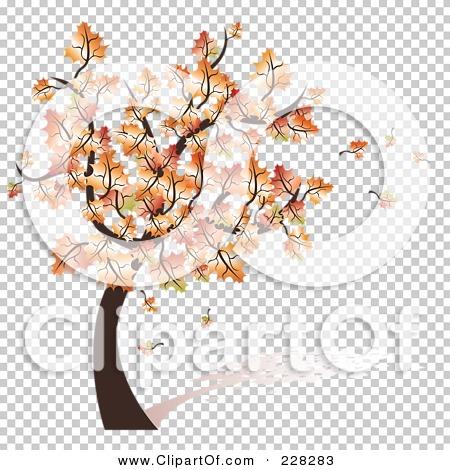 Transparent clip art background preview #COLLC228283
