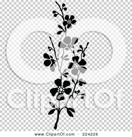 Transparent clip art background preview #COLLC224226