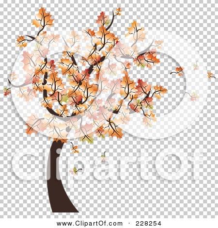 Transparent clip art background preview #COLLC228254