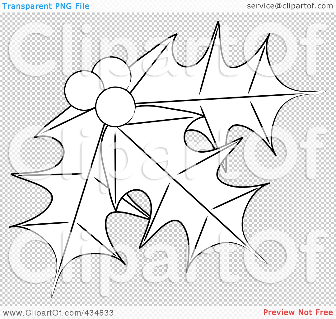 Displaying 17> Images For - Holly Leaf Outline...