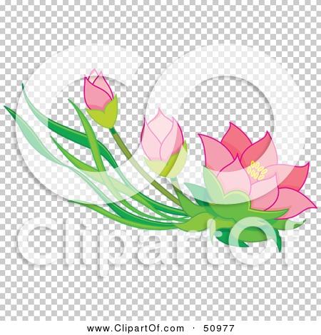 Transparent clip art background preview #COLLC50977