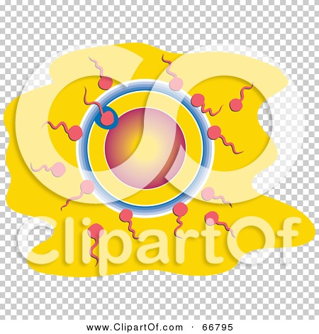 Transparent clip art background preview #COLLC66795
