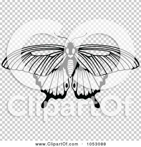 Transparent clip art background preview #COLLC1053088