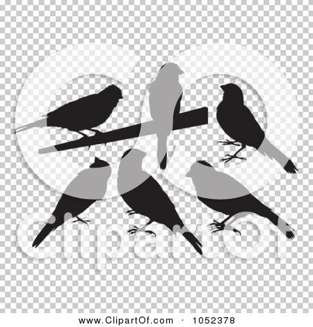Transparent clip art background preview #COLLC1052378