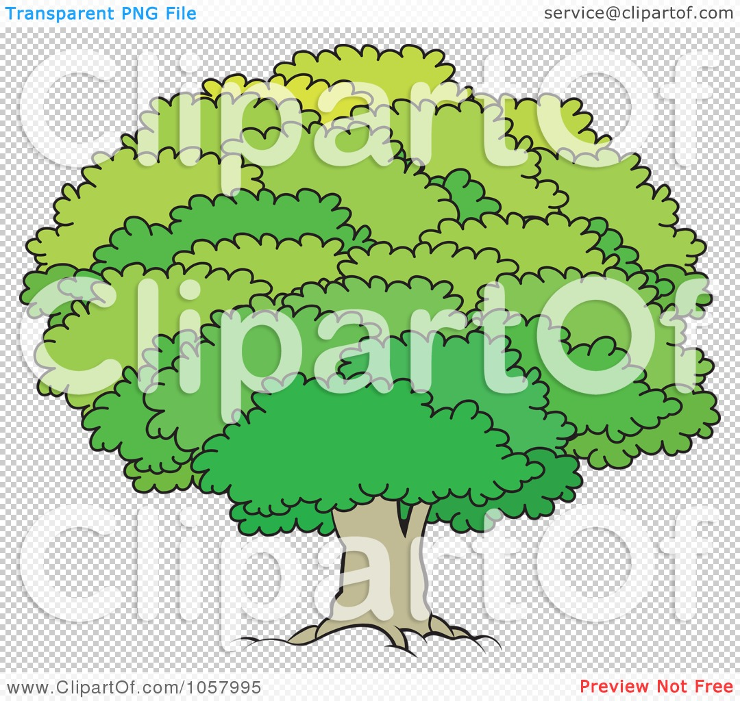 Royalty Free Vector Clip Art Illustration Of A Mature Tree With A Lush Canopy 1 10241057995 ... stop other girls from agreeing to film themselves engaging in sex acts ...