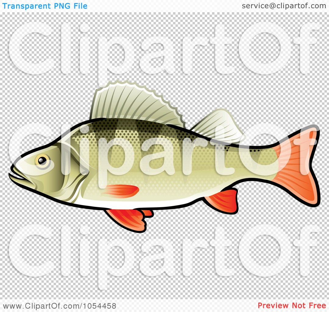 Royalty-Free Vector Clip Art Illustration of a Perch Fish by TA ...