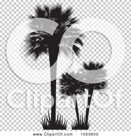 Transparent clip art background preview #COLLC1053600