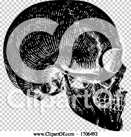 Transparent clip art background preview #COLLC1706492