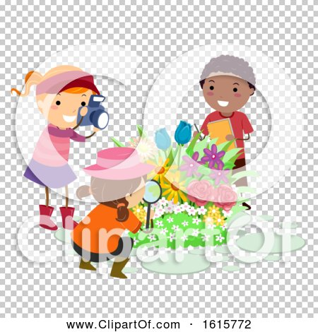 Transparent clip art background preview #COLLC1615772
