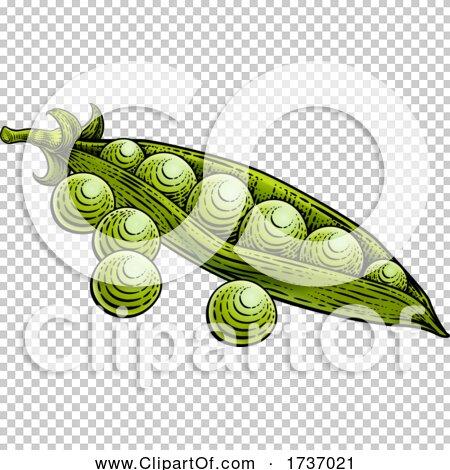 Transparent clip art background preview #COLLC1737021