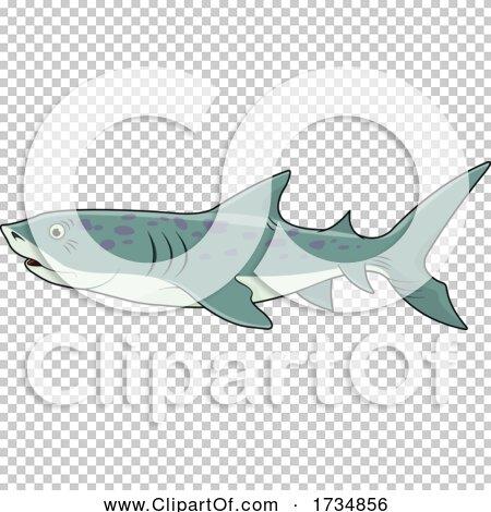 Transparent clip art background preview #COLLC1734856