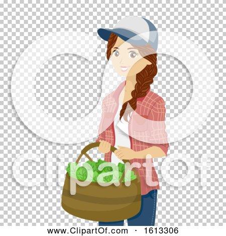 Transparent clip art background preview #COLLC1613306