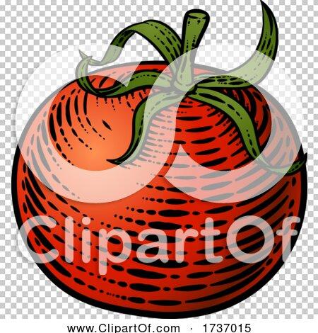 Transparent clip art background preview #COLLC1737015