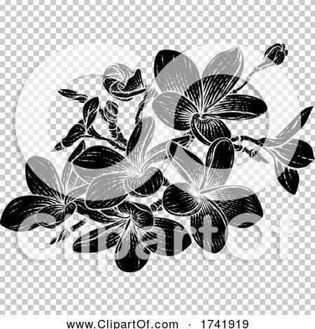 Transparent clip art background preview #COLLC1741919