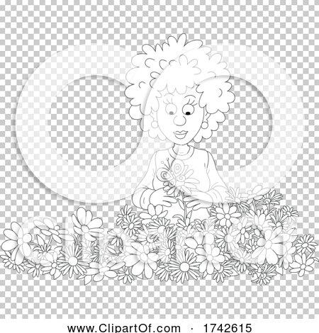 Transparent clip art background preview #COLLC1742615